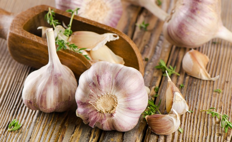 Garlic - Candida Diet supplement