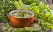 Broccoli Soup - Yeast Free Recipes