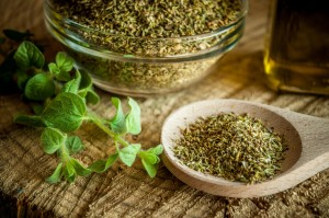 Oregano - Candida Diet Benefits